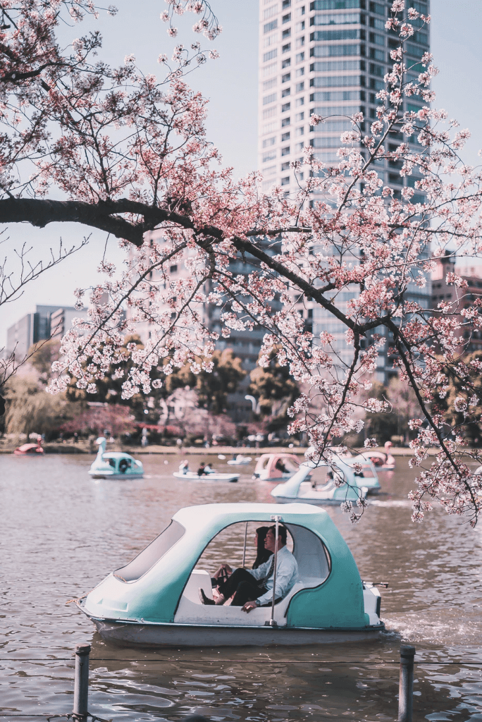 Ueno Park boating